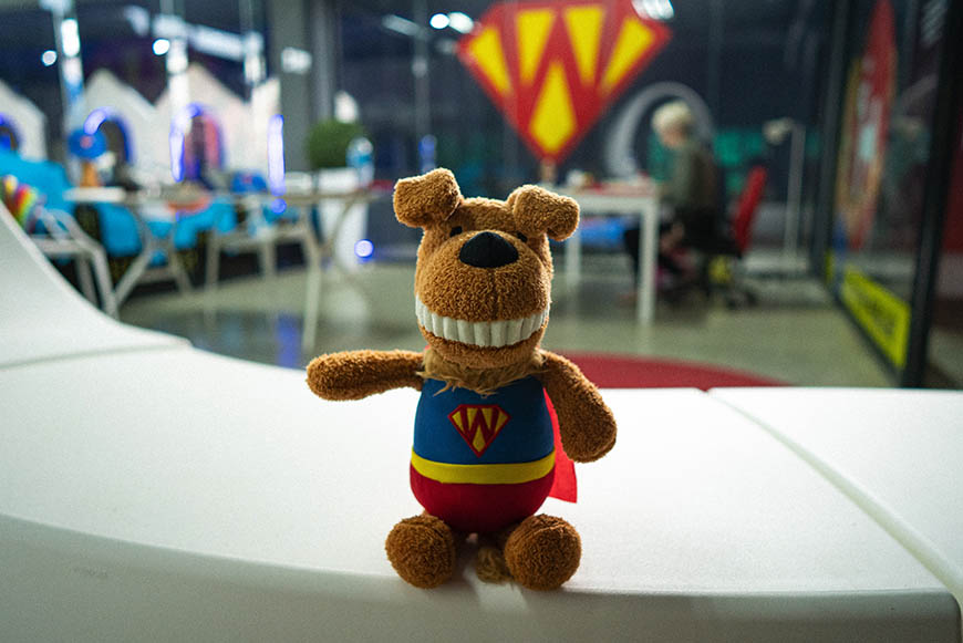 Our mascot at SUPERWOOF dog hotel