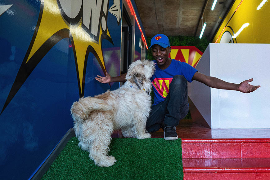 Show some puppy love at SUPERWOOF dog hotel and day care